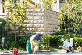 募集中の職種 | Farm&Gardens